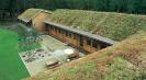 dachy zielone coraz bardziej popularne